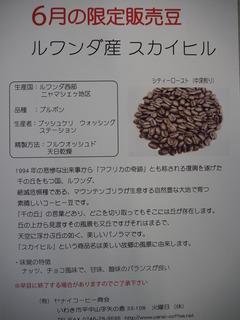 P6020415.JPG